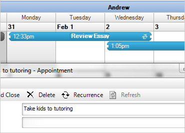 Enter new appointments and adjust existing appointments with the full calendar functionality provided.
