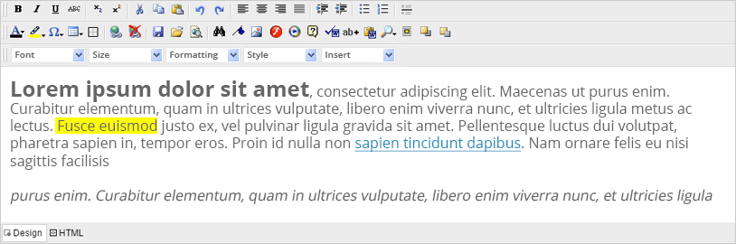 ASP Rich Text Editor with Text Formatting options