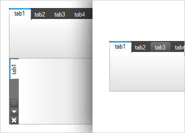 Windows Forms Tab Control